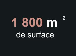 surface-pevele-arena