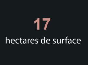 surface-stade-de-france