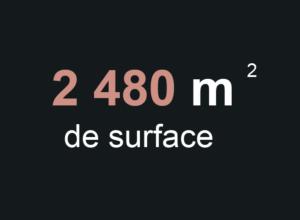 surface-summum